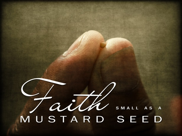 faith-small-as-a-mustard-seed-pic-2016